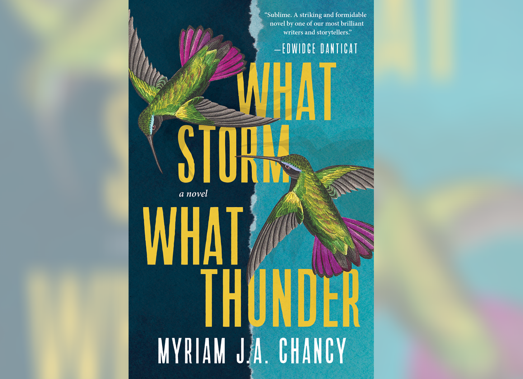 Cover art for Myriam J.A. Chancy's What Noise, What Thunder